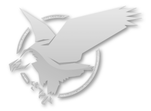 TeamEagle-Logo-Diamond copy